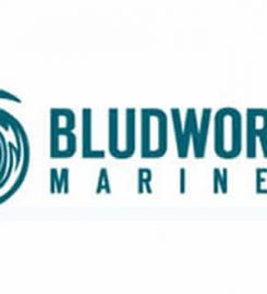Bludworth Marine LLC